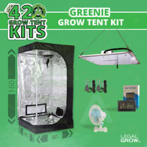 Greenie Grow Tent Kit-legalgrow.co.za